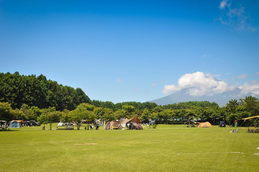 grass camp